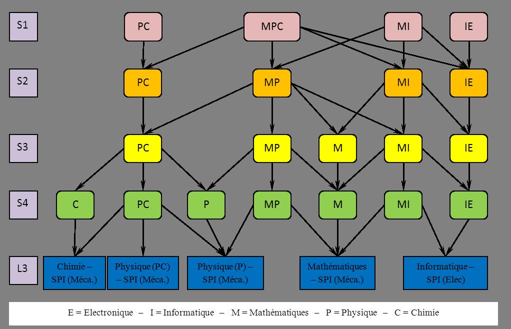 schema l1-l2